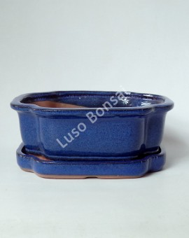 Vaso+ Prato Oval 25x20x8 cm - Azul
