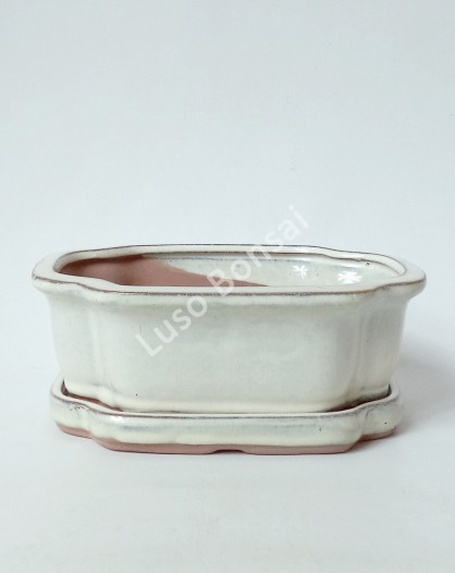 Vaso + Prato Oval 25x20x8 cm Creme